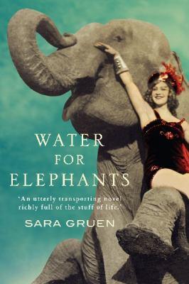 Recensione Acqua Agli Elefanti Il Luccicante Mondo Brutale Del
